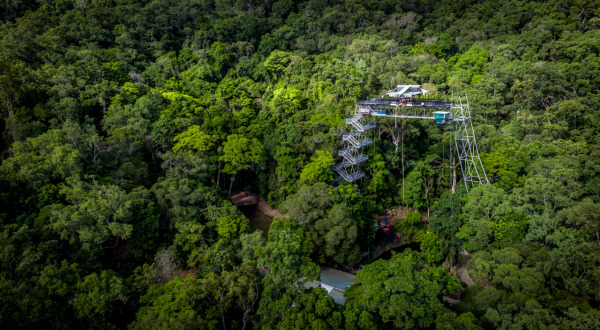 Bungy Jump Tower 50 Metres High in the Rainforest Canopy