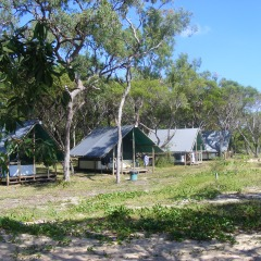 Bush Lodging on  Cairns to Cape York 4WD Tour