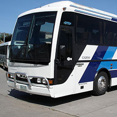 Cairns Airport Transfers to Palm Cove - Seat in Coach