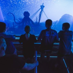 Cairns Aquarium | Sea Explorer Virtual Submarine