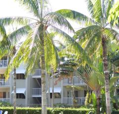 Cairns Beach Resort surrounded by Tropical Gardens