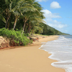 Cairns Beaches holiday accommodation tours & attractions. Queensland Australia