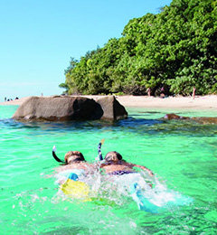 Cairns Beaches Accommodation | Things To Do | Attractions and Tours