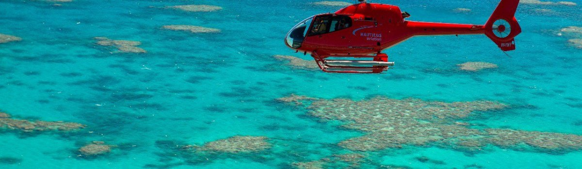 Cairns Best Half Day Helicopter & Reef Tour | Fly/Cruise - Great Barrier Reef