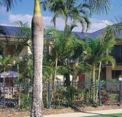 Cairns Budget Motel Accommodation | Suites & Self Contained Units