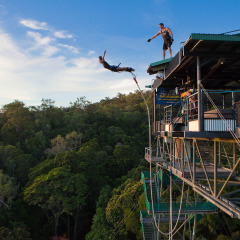 Cairns Bungy Jump | Take the Plunge