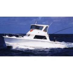 Cairns charter boat - 43 ft snorkel and fish tour