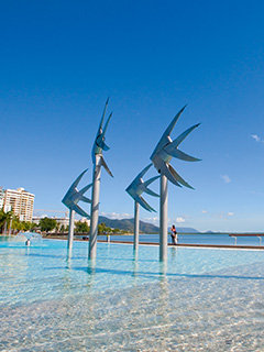 Cairns city swimming pool