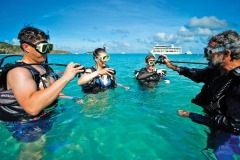 Cairns Cruise Ship Tours - Scuba Dive The Great Barrier Reef