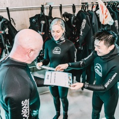 Cairns dive with the sharks | Diving certificate