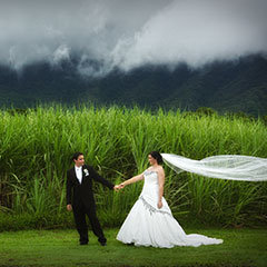 Cairns Great Barrier Reef Weddings by Cairns Holiday Specialists