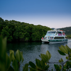 Cairns Harbour Cruise | Trinity Inlet