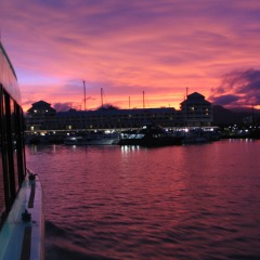 Cairns harbour sunset cruise