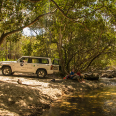 Cairns Hiking Tours - Our 4WD