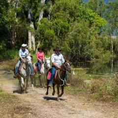 Cairns horse riding tours