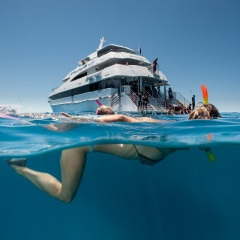 Cairns Luxury Reef Trips - Admirals Club Lounge Access - Snorkellers