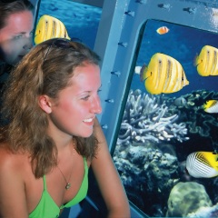 Cairns Luxury Reef Trips - Semi - Submersible submarine tour