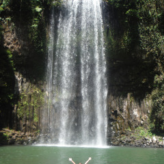 Cairns Most Famous Waterfall | Millaa Milla Falls