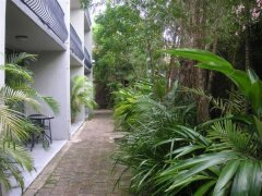 Cairns Motel - Tropical Gardens