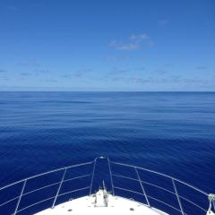 Cairns Private Charter Boat - Enjoy a day or stay overnight on the Great Barrier Reef
