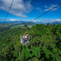 Cairns Rainforest tours