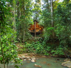 Cairns Rainforest Treehouse | Cairns' Atherton Tablelands Accommodation