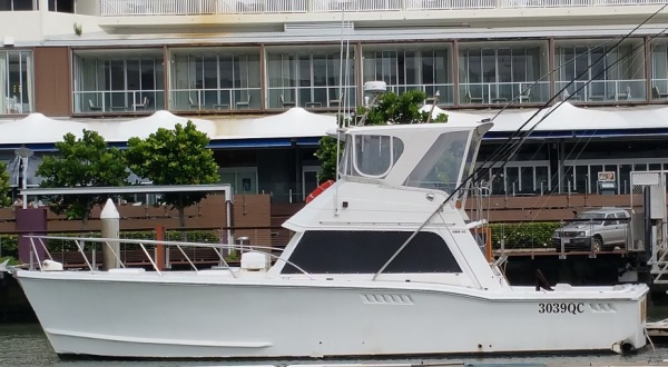 Cairns Reef Fishing - Private Charter Boat