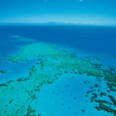 Cairns scenic flights - Aerial View of Great Barrier Reef