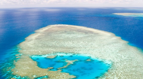 Cairns Scenic Flights - Helicopter View of Great Barrier Reef