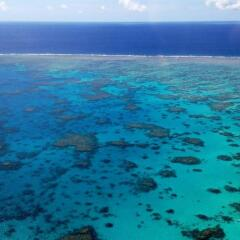 Cairns Scenic Flights over The Great Barrier Reef
