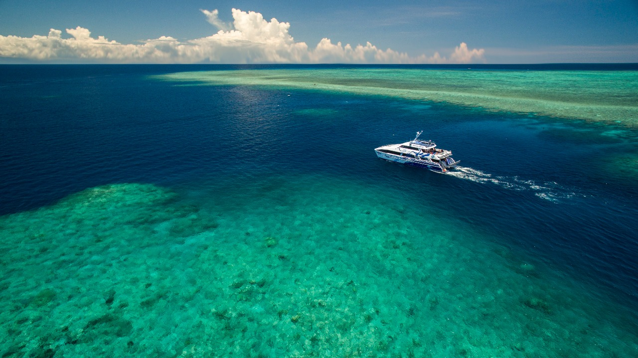 Cairns Tours & Attractions