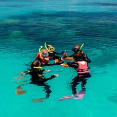 Cairns Snorkel Tour - Learn To Snorkel Michaelmas Cay