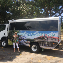 Cairns to Cooktown 4WD Tours