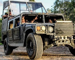Cairns Ultimate Off Road Adventure - Hummer Tours at Night in the Rainforest