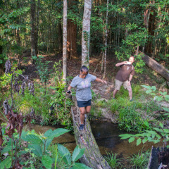 Cairns Walking Tours - Atherton Tablelands - Australia