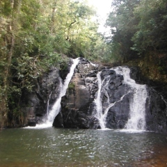Cairns Waterfalls Tour | Dinner Falls