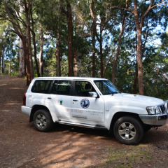 Cairns Wildlife Tours 4WD