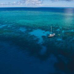 Cairns Yacht Charters - 1 Day or Liveaboard Dive Tours