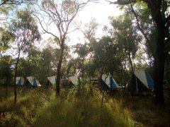 Camp at Undara National Park