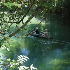 Canoe in the Daintree Cape Tribulation rainforests