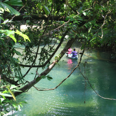 Canoeing in Fresh Water Stream | Full Day Daintree Private Tour
