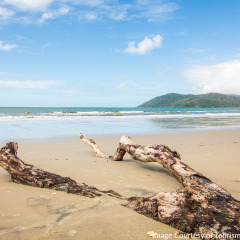Cape Tribulation Beach - Aboriginal Cultural Tour