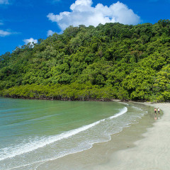 Cape Tribulation Beach | 3 Day Combo