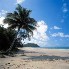 Cape Tribulation Beach | Daintree Rainforest | Romantic Escape For Two In Tropical North Queensland