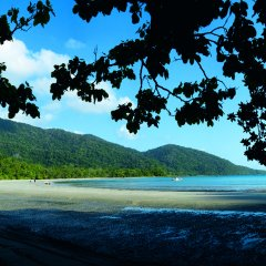 Cape Tribulation Beach - 3 Day Cooktown 4WD Tour