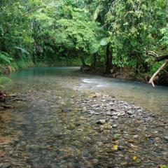 Cape Tribulation Cooper Creek | Stunning Waters Of Tropical North Queensland | Overnight Stay
