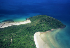Cape Tribulation | Daintree National Park