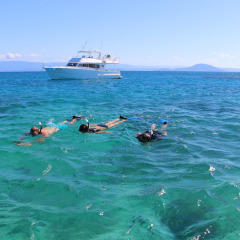 Port Douglas Charter boat at anchor guests snorkelling, Great Barrier Reef, Australia