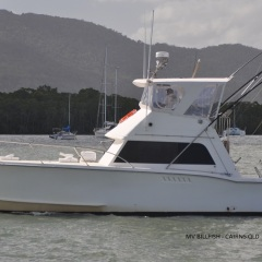 Charter Boat Cairns - Private Charter Snorkel Tours
