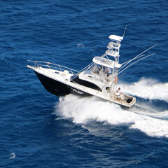 Charter Boat Port Douglas | Comfortable Private Air Conditioned Cabin